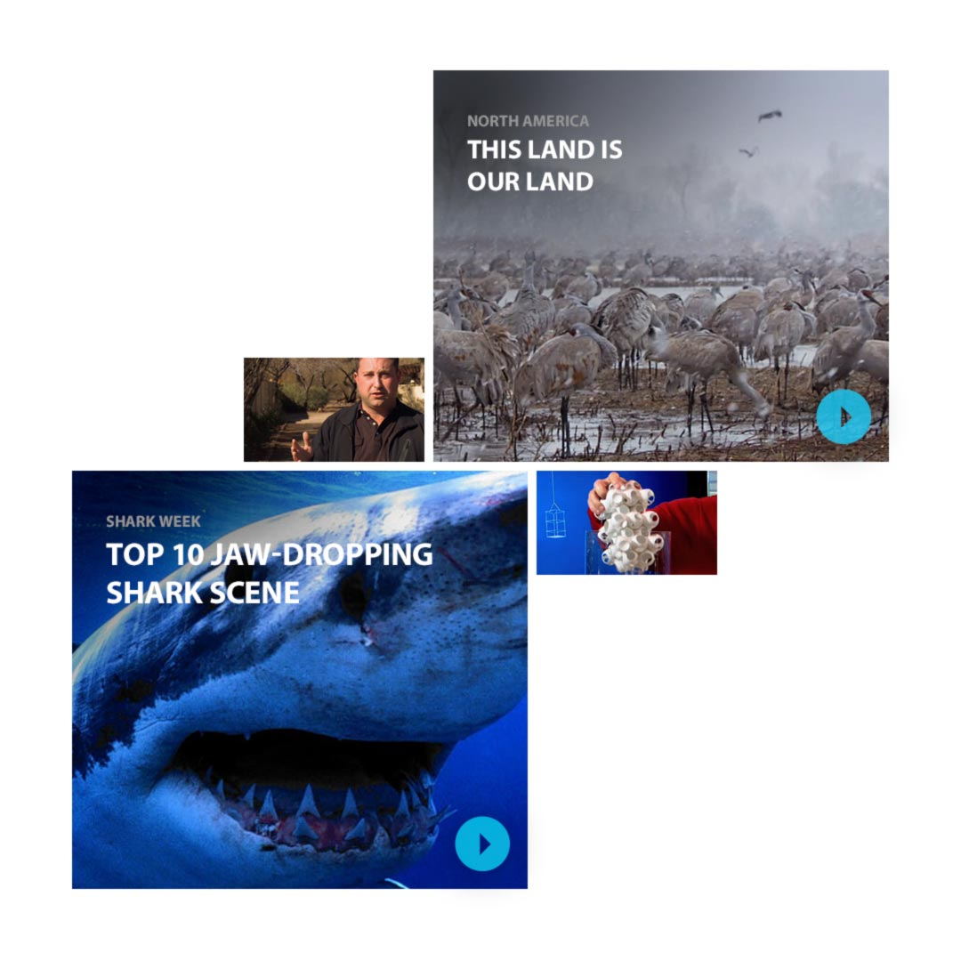 Discovery Channel TV Shows iOS application